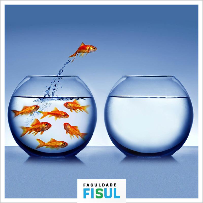Fisul Design Thinking - Curso de Extensão