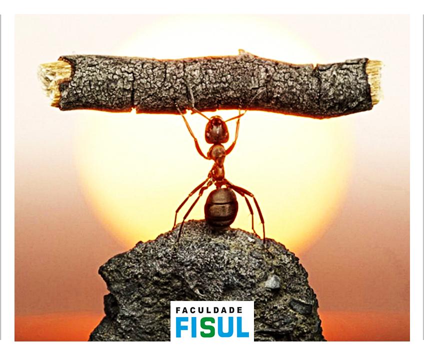 FISUL Inovar é ousar correr riscos
